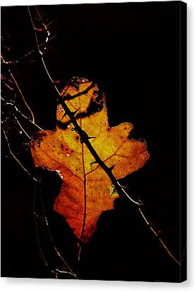 Cross And Thorns Canvas Print