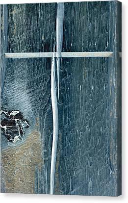 Cross2bear Canvas Print by Tom Druin