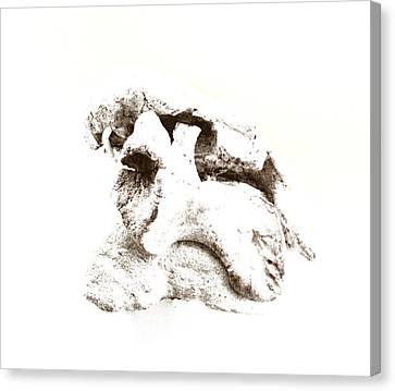 Crossbreed Canvas Print by Gina Dsgn
