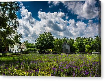 Crossroads Village Pasture Canvas Print by Randy Scherkenbach