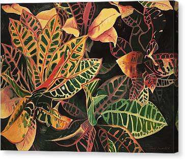 Croton Leaves Canvas Print by Judy Swerlick