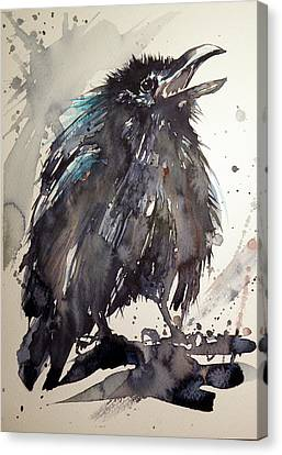 Crow Baby Canvas Print