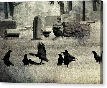 Birds In Graveyard Canvas Print - Crow Fight by Gothicrow Images