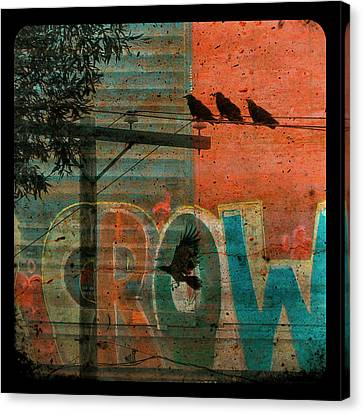 Crow Graffiti  Canvas Print by Gothicrow Images