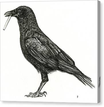 Canvas Print featuring the drawing Crow by Penny Collins