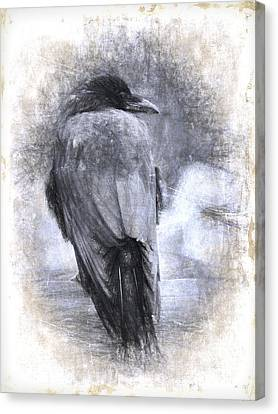 Crow Sketch Painterly Effect Canvas Print by Carol Leigh