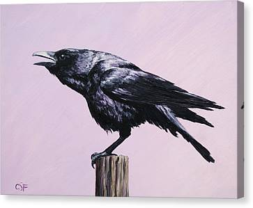 Crow - Sounding Off Canvas Print by Crista Forest