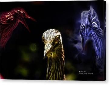 Crowned Heron - 5466 Fa Canvas Print by James Ahn