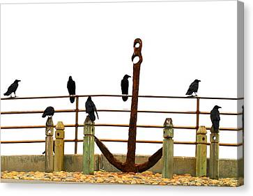 Crows At Anchor Canvas Print by John King
