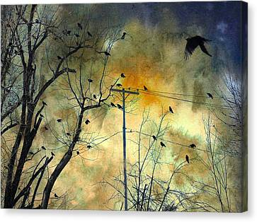 Crows Colors Canvas Print