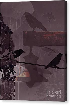 Crows  Canvas Print by Robert Ball