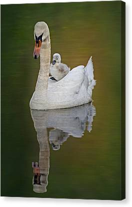 Cruising With Mom Canvas Print by Susan Candelario