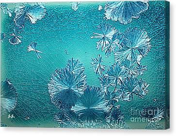 Crystal Blue Persuasion Canvas Print by Geri Glavis