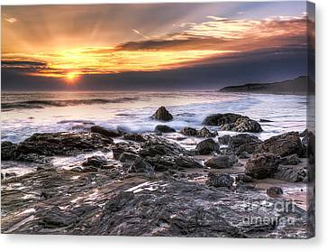 Crystal Cove State Park Canvas Print