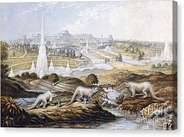 Crystal Palace Dinosaurs By Baxter, 1854 Canvas Print by Paul D. Stewart