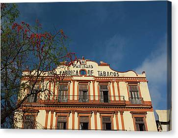 Habana Canvas Print - Cuba, Havana, Central Havana by Walter Bibikow