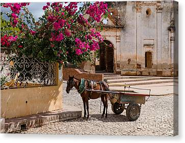 Canvas Print featuring the photograph Cuba Impression by Juergen Klust