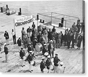 Cubs Arrive At Catalina Island Canvas Print by Underwood Archives