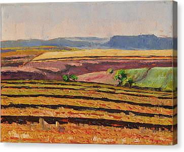 Canvas Print featuring the painting Cultivated Fields Near Ficksburg South Africa Bertram Poole by Thomas Bertram POOLE