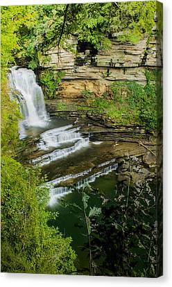 Cummins State Park Falls Vista Canvas Print by Douglas Barnett