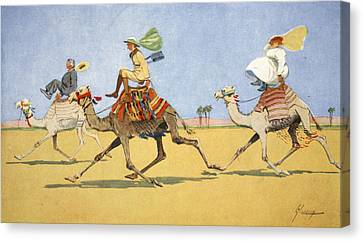 Cup And Ball-the Camels Favourite Game Canvas Print