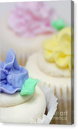 Cupcakes Shallow Depth Of Field Canvas Print by Amy Cicconi
