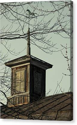 Cupola Through The Trees Canvas Print by Debbie Finley