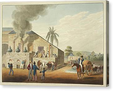 Curing-house And Stills Canvas Print by British Library