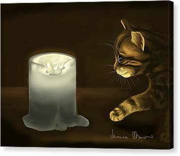 Candle Lit Canvas Print - Curious Cat by Veronica Minozzi