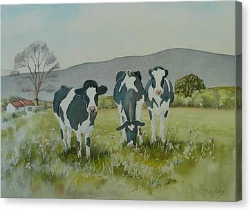 Canvas Print featuring the painting Curious Cows by Jo Appleby