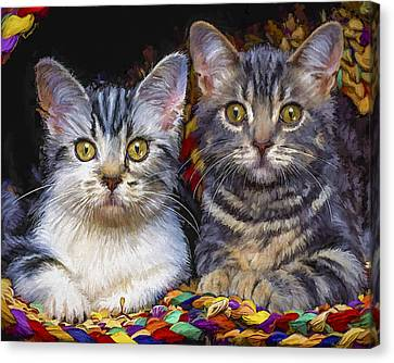Curious Kitties Canvas Print