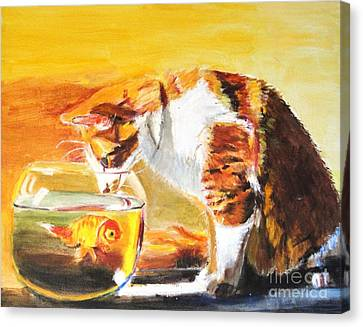 Curious Kitty Canvas Print by Judy Kay