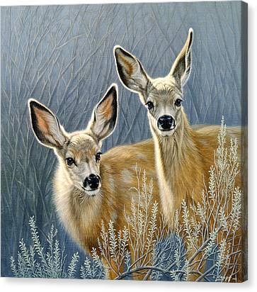 Mule Deer Canvas Print - Curious Pair by Paul Krapf
