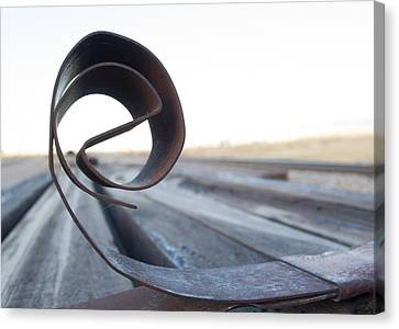 Curled Steel Canvas Print by Fran Riley