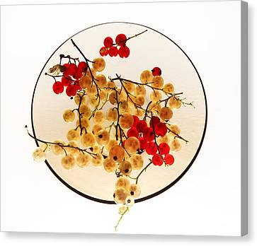 Currants On A Plate Canvas Print
