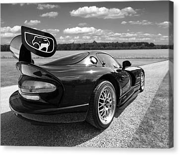 Curvalicious Viper In Black And White Canvas Print by Gill Billington