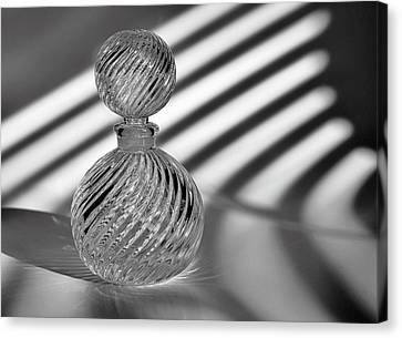 Curvatures 2...black And White Canvas Print by Tom Druin