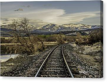 Canvas Print featuring the photograph Curve In The Tracks by Sue Smith