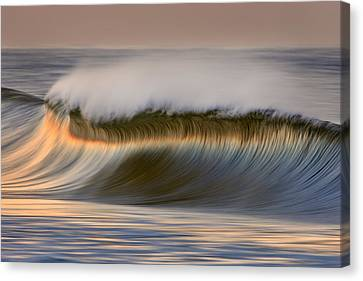 Canvas Print featuring the photograph Curved Crest C6j9295 by David Orias