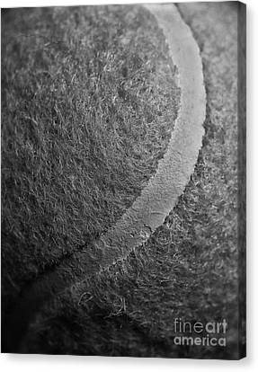 Curved Line Of A Tennis Ball Canvas Print
