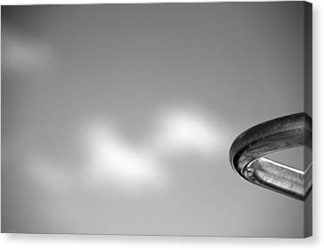 Stainless Steel Canvas Print - Curved by Peter Tellone