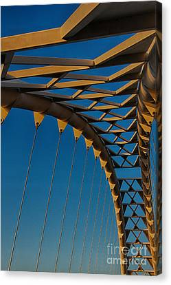 Curves And Triangles Canvas Print
