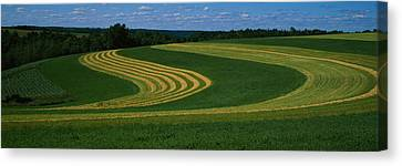 Curving Crops In A Field, Illinois, Usa Canvas Print by Panoramic Images
