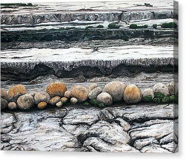 Cushion Bush Dam Canvas Print by Lyndsey Hatchwell