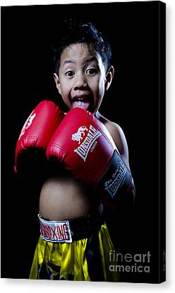 Cute Boxer Canvas Print by Mystique Asian