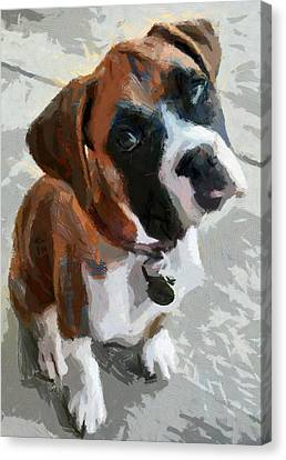 Canvas Print featuring the painting Cute Dog by Georgi Dimitrov