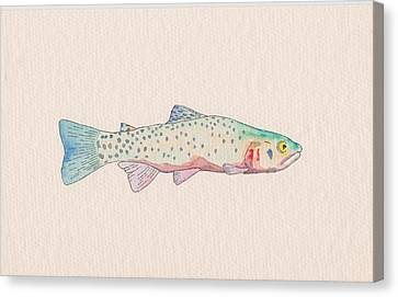 Cutthroat Trout Canvas Print by Stephen Moore