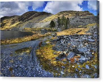 Cwmorthin Landscape Canvas Print by Ian Mitchell