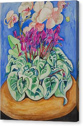 Cyclamen And Orchids In A Flower Pot Canvas Print by Esther Newman-Cohen