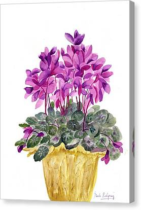 Cyclamen Canvas Print by Neela Pushparaj